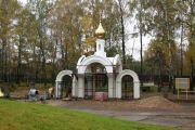 Золотой купол на главных вратах, октябрь 2009 г..