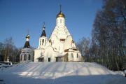 Золотые купола, декабрь 2009 г.