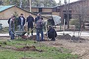 Высадка фруктовых деревьев и кустарников, апрель 2015 г.