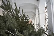 Сольбинский монастырь готовится к Рождеству Христову.