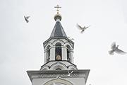 В день Благовещенья Подтверждаю торжественно: Не надо мне ручных голубей, лебедей, орлят! – Летите, куда глаза глядят В Благовещенье, праздник мой!